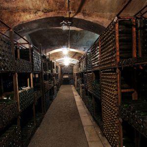 vinogradarstvo02